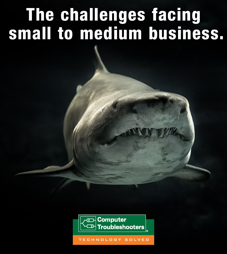 shark depicting challenges small to medium businesses face with Cyber Security